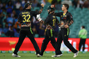 Mitchell Swepson took figures of 1 for 25, Australia vs India, 2nd T20I, Sydney, December 6, 2020
