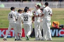 Tim Southee is congratulated for a wicket, New Zealand vs Pakistan, 1st Test, Mount Maunganui, Day 4, December 29 2020