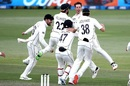 Mitchell Santner took the catch that gave New Zealand a memorable victory, New Zealand vs Pakistan, 1st Test, Mount Maunganui, Day 5, December 30 2020