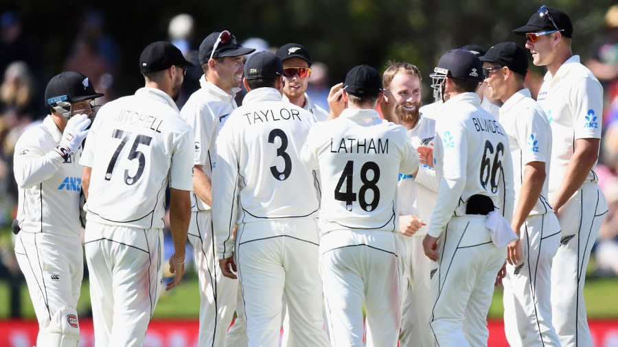 Kane Williamson is mobbed by team-mates after sending back Shaheen Afridi