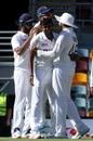 T Natarajan sent back Matthew Wade and Marnus Labuschagne in quick succession, Australia vs India, 4th Test, Brisbane, 1st day, January 15, 2020