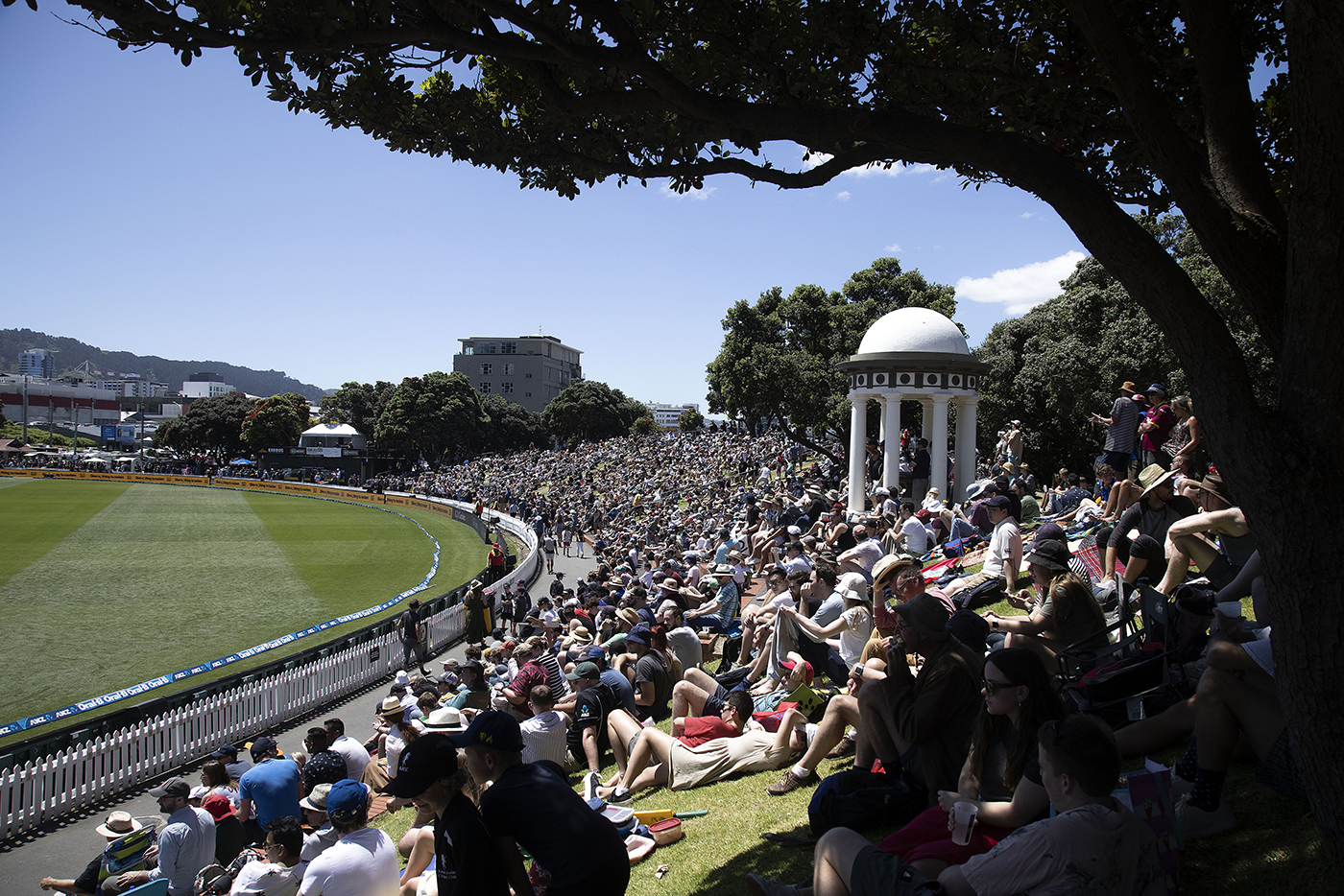 Fans enjoy cricket and the sun at the Basin Reserve, Wellington