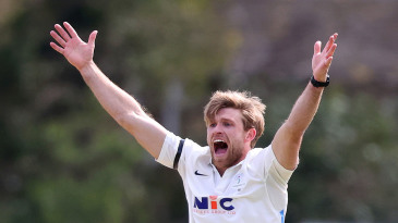 David Willey appeals for a wicket