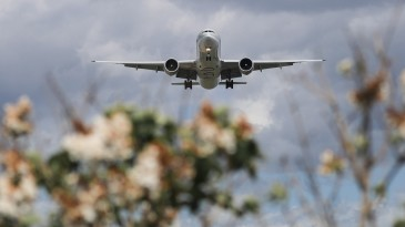 View of an airplane from the ground