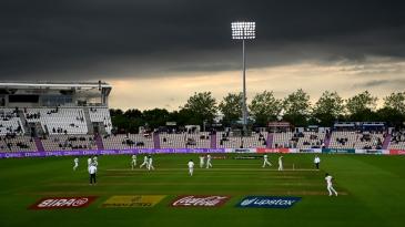 India celebrate Devon Conway's wicket under darkening skies