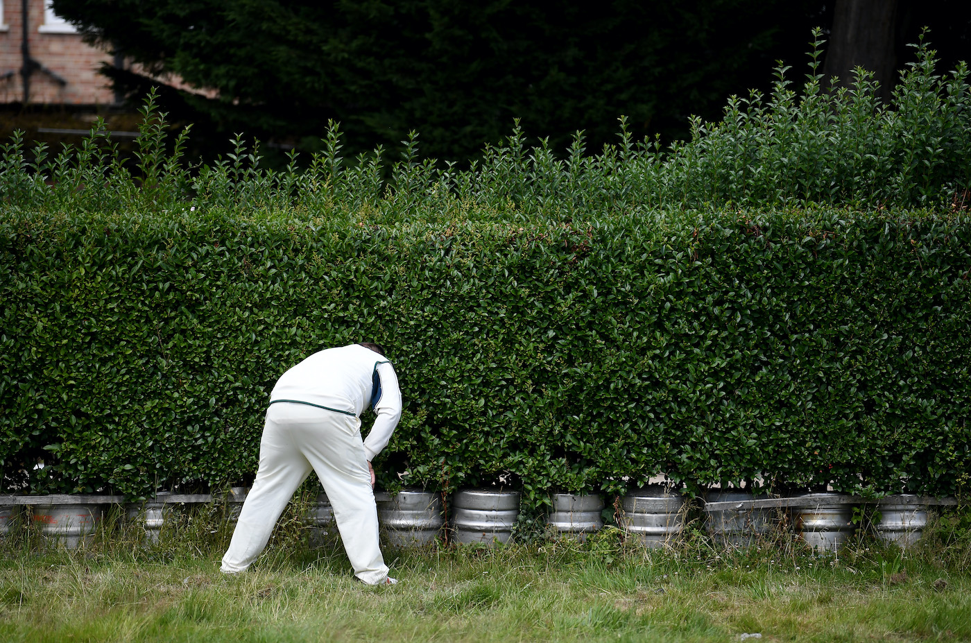 If there's a bustle in your hedgerow don't be alarmed now - it's just a fielder from the village green