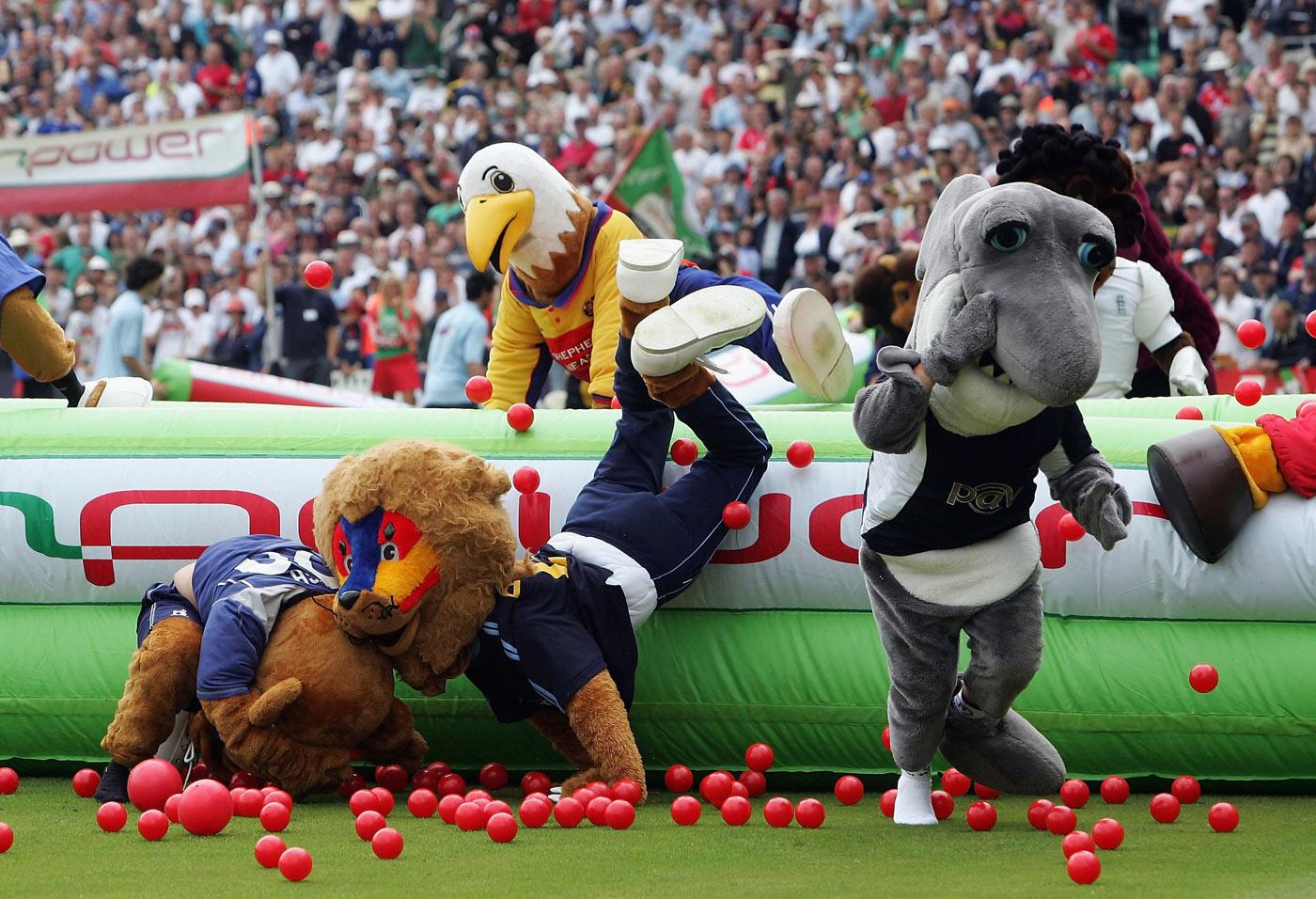 the mascot race on twenty20 finals day cricket photo