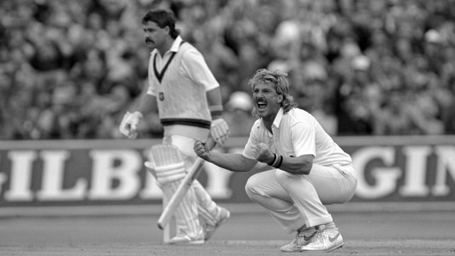 Ian Botham roars his delight after taking a wicket