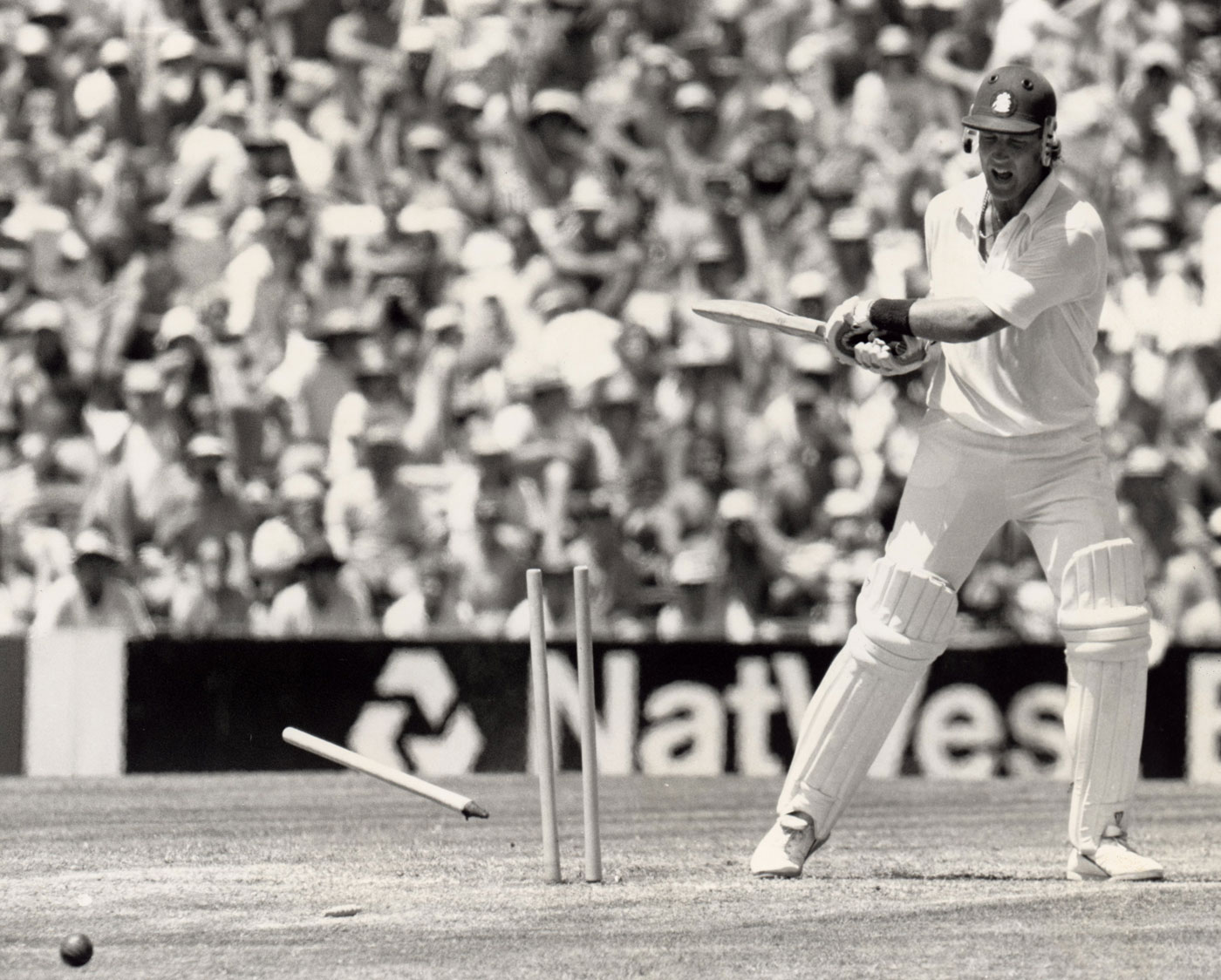 Broad smashes his stumps after being dismissed in the Sydney Test early in 1988. What did he do after being dropped in the series against West Indies later in the year? Answers on a postcard