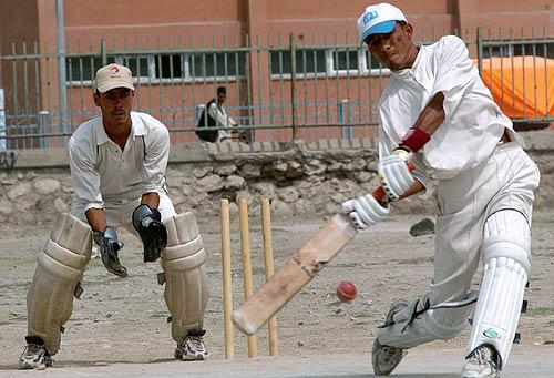 Better Self Defense Weap Cricket Or Baseball Bat