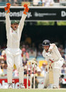 Adam Gilchrist appeals - successfully - for lbw against Ian Bell