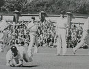 Verdun Scott dives and takes a brilliant diving catch to remove Don Tallon, New Zealand v Australia, Wellington, March 29, 1946
