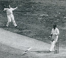 Bill Woodfull drops his bat after being hit by  Harold Larwood