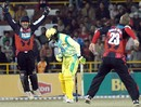 Deep Dasgupta and Darren Maddy of the Kolkata Tigers celebrate the wicket of Rajesh Sharma, Chandigarh Lions v Kolkata Tigers, Indian Cricket League, December 2, 2007