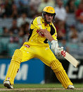 Shaun Marsh boosted Western Australia to a home final and the chance for millions in the India Twenty20, New South Wales v Western Australia, KFC Twenty20, Sydney, January 10, 2008