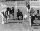 Deryck Murray, Clyde Walcott, Viv Richards and Alvin Kallicharran field as English footballer Geoff Hurst tries his hand at batting a football, Stamford Bridge, July 23, 1980