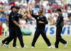 Members of the New Zealand team celebrate the dismissal of Yuvraj. 4th ODI: New Zealand v India at Queenstown, 4 Jan 2003