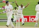 Sanath Jayasuriya celebrates after dismissing Brendon McCullum, New Zealand v Sri Lanka, 1st Test, Napier, April 7, 2005