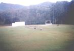 Portrait of Radella Cricket Grounds, 2001