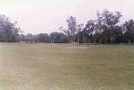 A good view of the turf at the Aligarh Muslim University Ground