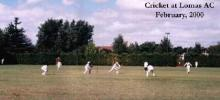 Cricket at Lomas AC